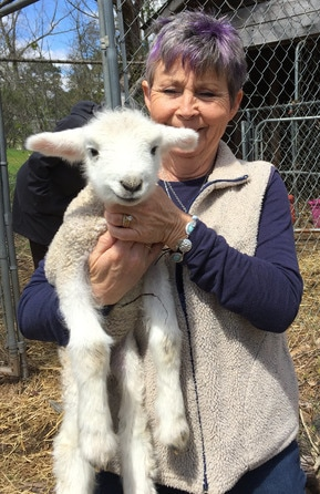 Jeri Lynn Farms Kinard SC Photo of Jeri Lynn With Lamb