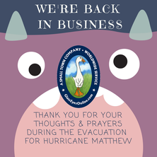 We're Back In Business Notice to Newsletter Subscribers After Hurricane Matthew Picture